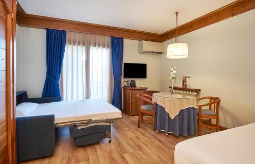 Superior Double or Twin Room - single occupancy Hotel Grèvol Spa 1