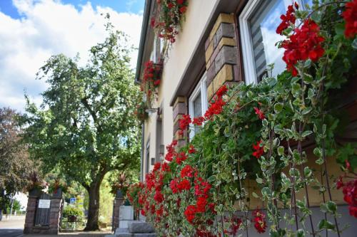 __{offers.Best_flights}__ Hôtel Deybach