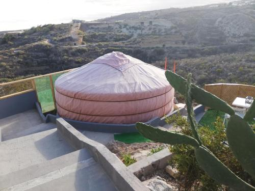 Yurta de Arico