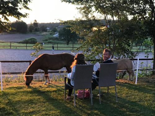 Hotel-overnachting met je hond in Farmlodge - Brastad