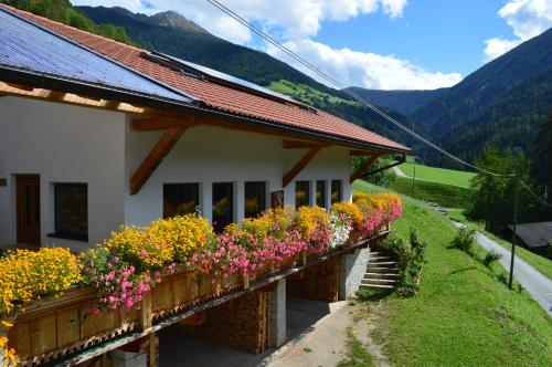 Martlerhof Urlaub auf dem Bauernhof - Apartment - Campo di Trens