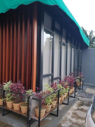 Lavender Guest House, Samarinda