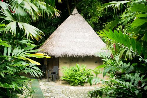 Claraluz Eco-lodging and Organic Farm