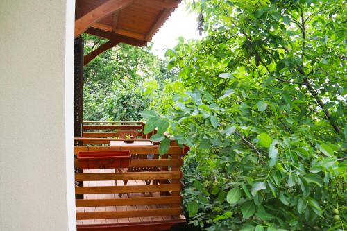 Casa Vacanze Il Giardino - Appartamento Castagno img9