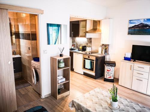 Appartement Hyper centre - Location saisonnière - Thonon-les-Bains