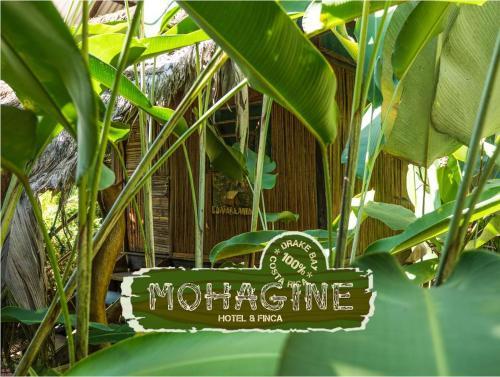 . Mohagine Hotel