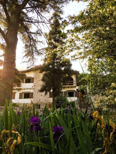 Casa mansa