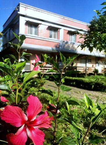 Green Forest Homestay