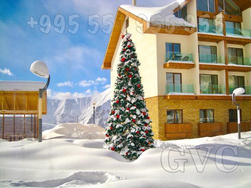 2-room 452 New Gudauri - Hotel