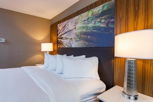 DoubleTree by Hilton Appleton, WI - Hotel - Appleton