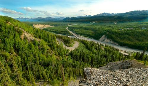 238 George Parks Hwy, Denali National Park and Preserve, AK 99755, United States.