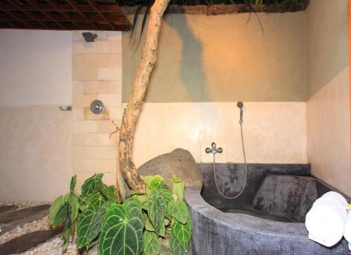 Bali Vidi Villas In Indonesia