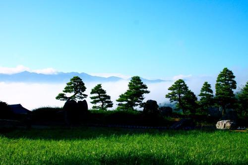 Sasayuri-Ann OZUNU