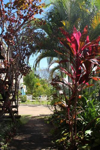 Hotel Asylum Cairns Backpackers Hostel