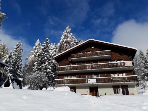 Lärchenwald Lodge - Accommodation - Bellwald