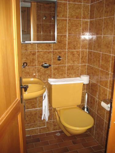 Alpage Immo Location Service - Apartment - Champoussin