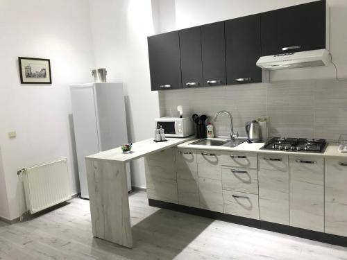 . Apartment suite Mukachevo