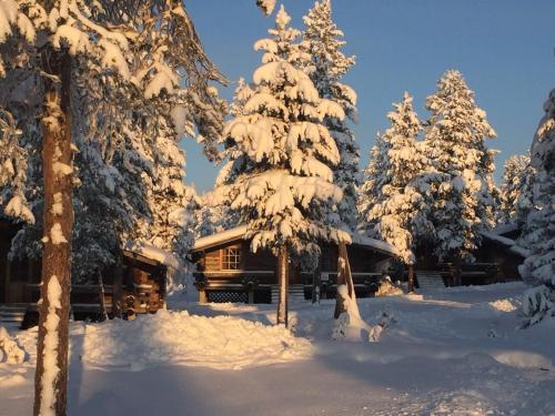 Arctic Log cabin
