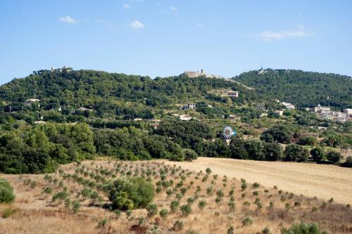 Carretera Cala Mesquida Km 1,  Desvío Camino Son Moltó  07580, Capdepera, Majorca.
