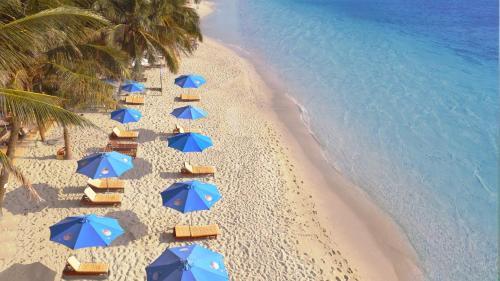 . Orange Resort