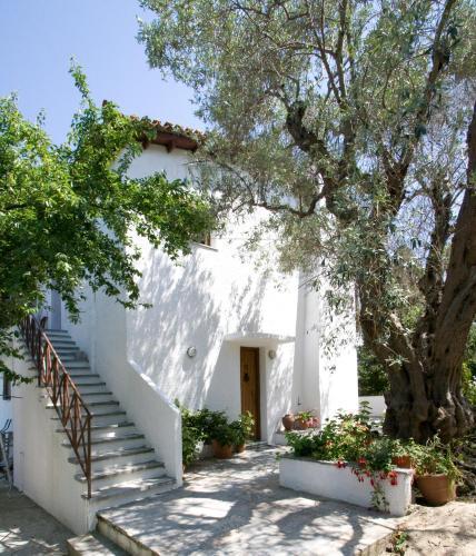 . Villas Alexandra Skiathos