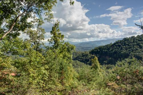 #2168 A View for Two - Dupont Springs