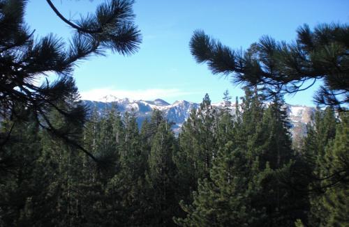 Innsbruck Lodge - Mammoth Lakes, CA 93546