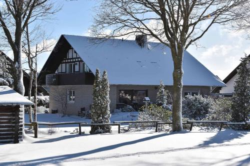 Ferienwohnung (H)Auszeit Pape - Apartment - Winterberg