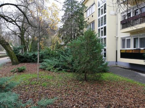 Tulip Family Apartments in Eger