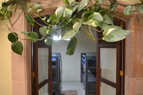 . Casa Zul; Cafe Hostal en Lagos de Moreno, Jal.
