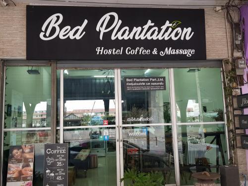 Bed Plantation Bed Plantation