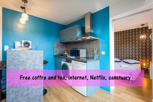 . LOURDES cosy appartement sanctuaire centre ville