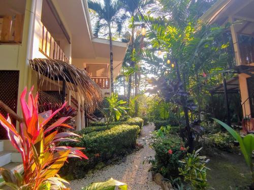 . Colibri Surf House & Flats
