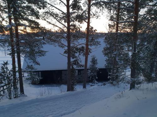 Alppihimos Cottage