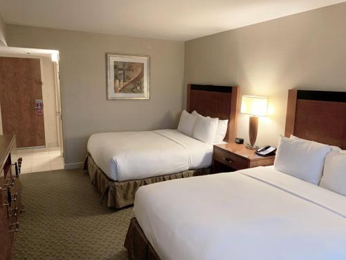 Hilton New York JFK Airport Hotel - image 7