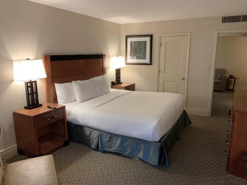 Hilton New York JFK Airport Hotel - image 9