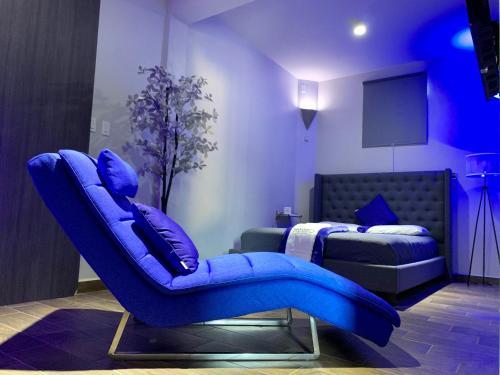 . Modern Suite #1 Pasavento