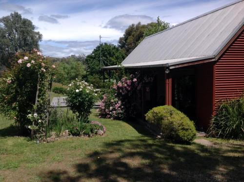 Accommodation in Currarong