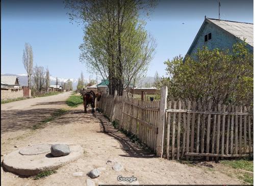 Abdyrazakov Talgartbek, Jumgal