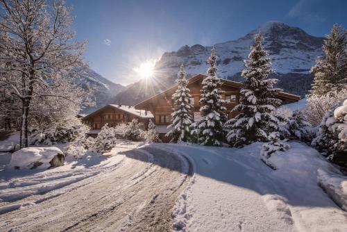 Chalet D - Grindelwald