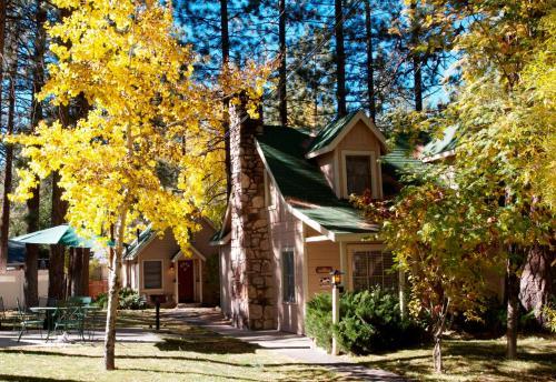 Sleepy Forest Cottages - Accommodation - Big Bear Lake