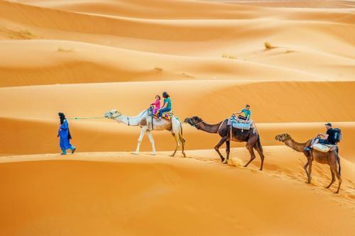 Magical berber camp