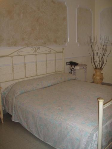 Punto Verde стая снимки