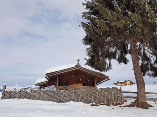 Almliesl HOLL-361 - Chalet - Hollersbach im Pinzgau