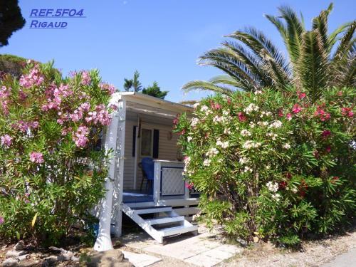 MOBILHOME dans CAMPING KON TIKI numéro 5F04 oasis - Camping - Saint-Tropez