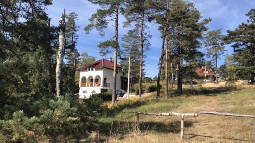 Vila ANA - Accommodation - Divcibare