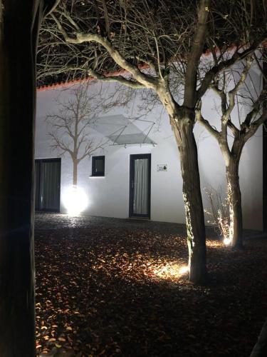 Horta Dos Cedros - Photo 8 of 79