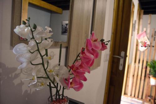 Canarian House Antigua Escuela