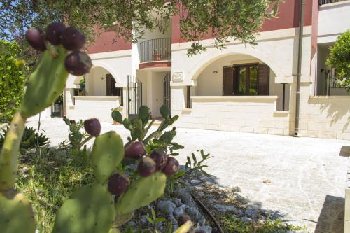 . Case ad Oriente-Residence Borgo Latino