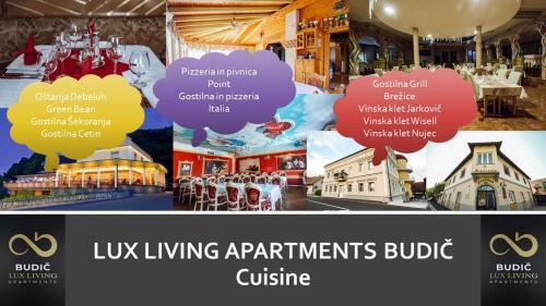 LUX LIVING APARTMENTS BUDIC, Brežice